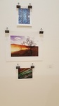 Cleigh Pascoe- Photographic Prints
