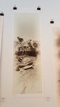"Guy R. Giersch- Bisti #22. Archival Ink Jet Print 16"" x 48"""