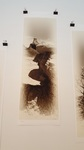 "Guy R. Giersch- Bisti #24. Archival Ink Jet Print 16""x 24"""