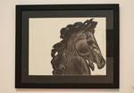 Yasmin Nasserzadeh, Dark Horse, Charcoal